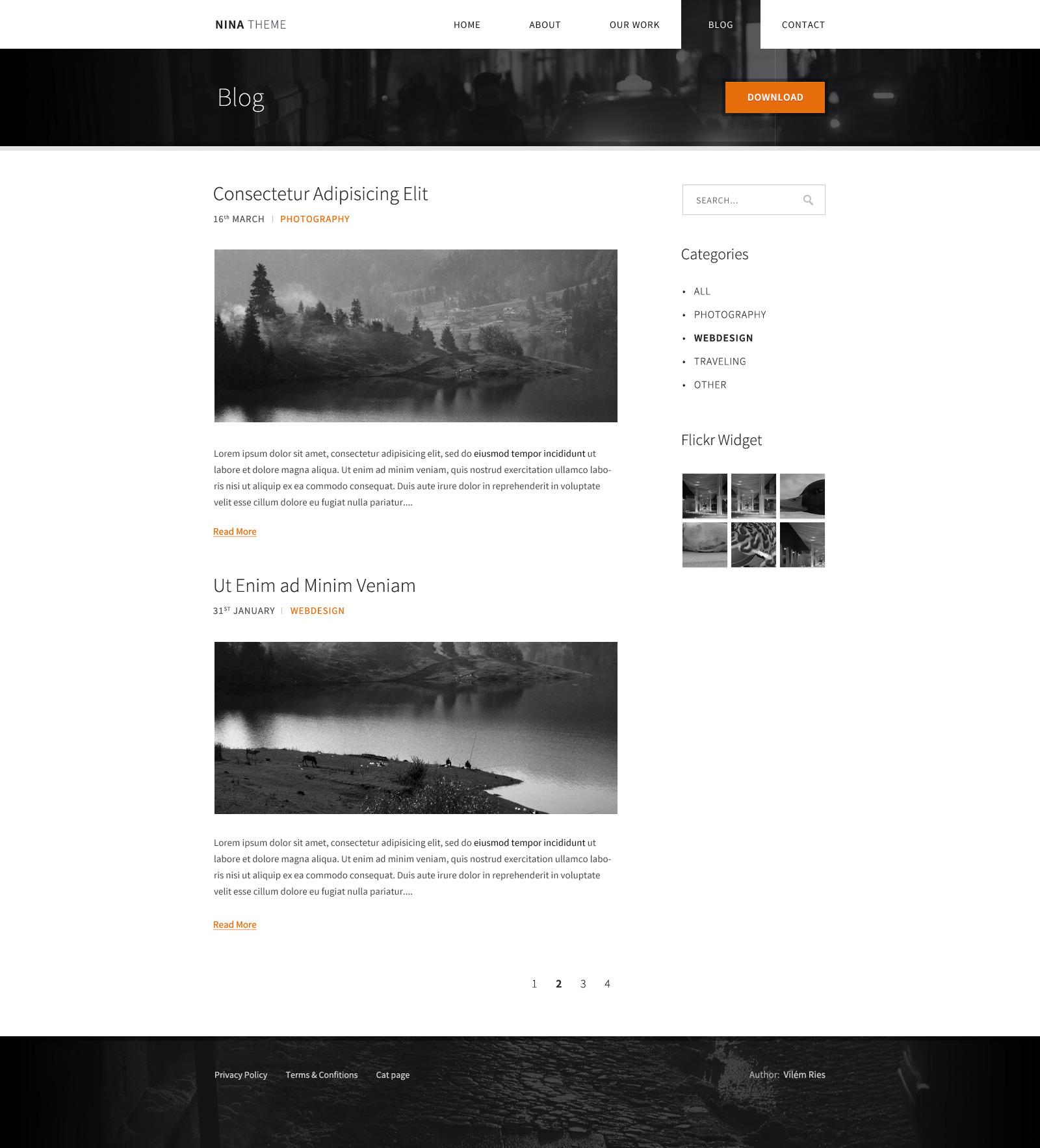 NINA – Minimalist PSD Theme
