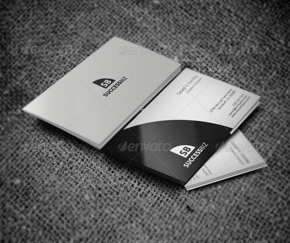 GraphicRiver Attractive Business Card 4074192