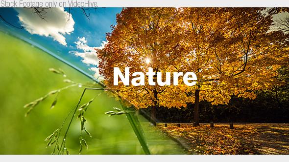 Nature Film