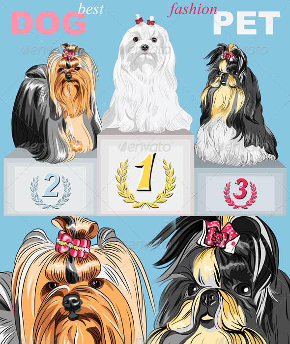 Vector Fashion Dog Champion on the Podium - Animals Characters