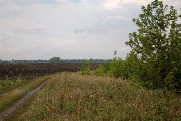 PhotoDune Rural road 4082538