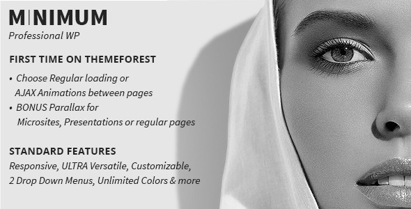 ThemeForest MINIMUM Professional WP 4084338