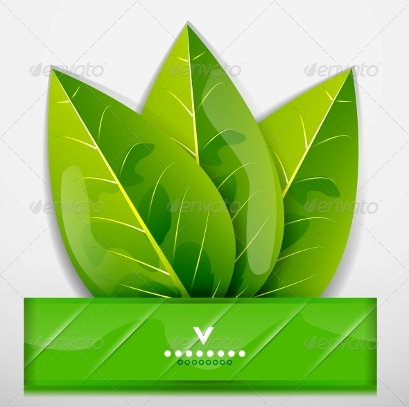 GraphicRiver Green Leaves Nature Design 4084699