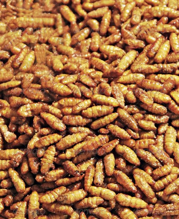 PhotoDune Fried larvaes 4088359