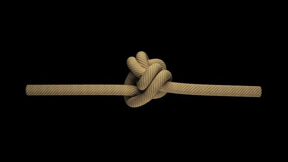 3DOcean Rope 4092136