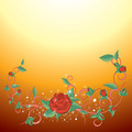 Rose Background - PhotoDune Item for Sale