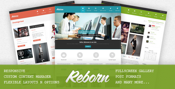 ThemeForest Reborn Premium Multipurpose WP Theme 4094745