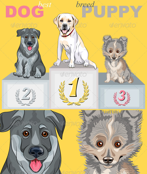 Vector Puppy Dog Champion on the Podium - Animals Characters
