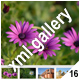 ADVANCED XML IMAGE GALLERY _v16 - ActiveDen Item for Sale