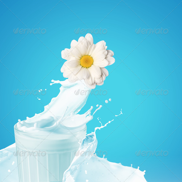 Fresh milk in the glass - Stock Photo - Images