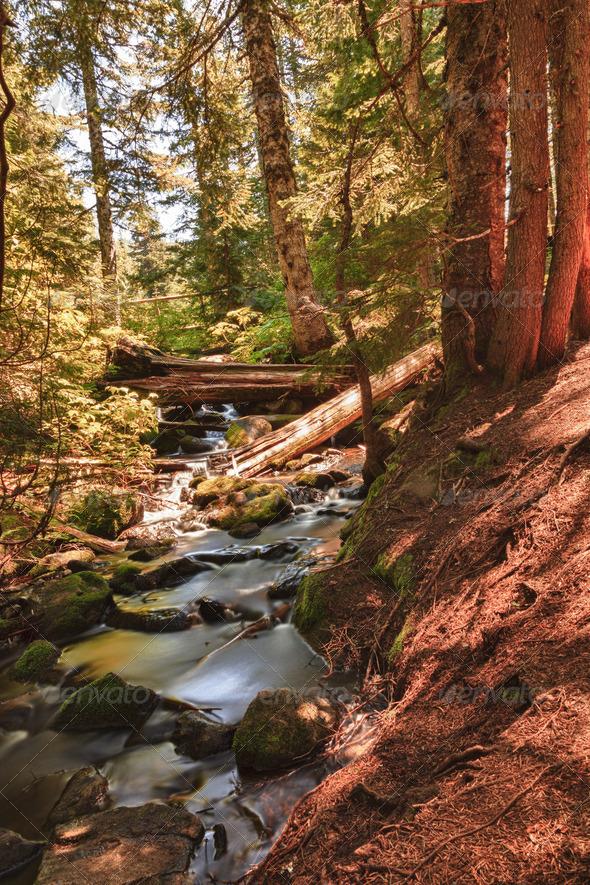 PhotoDune Water Flowing 4124988
