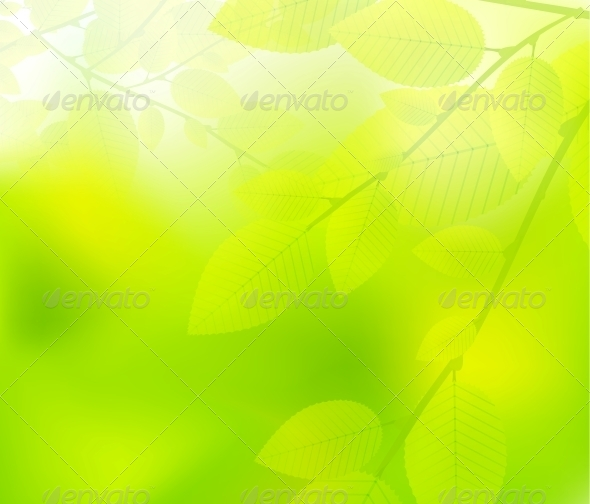 GraphicRiver Green Leaves Nature Design 4121450