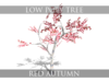 Lowpolytree-previewimageset-redautumn.__thumbnail