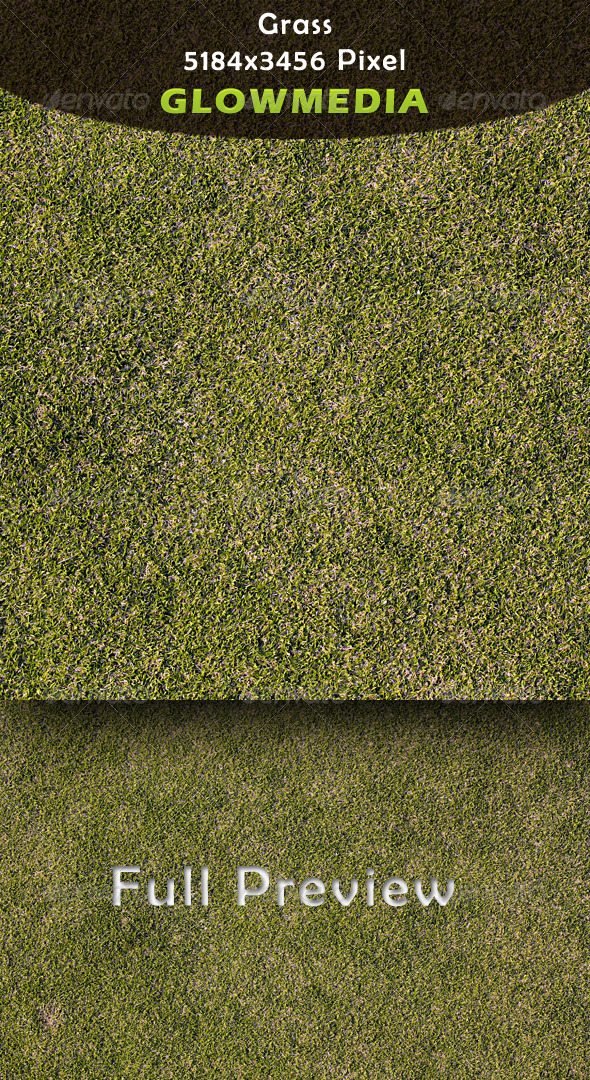 GraphicRiver Grass 4130231