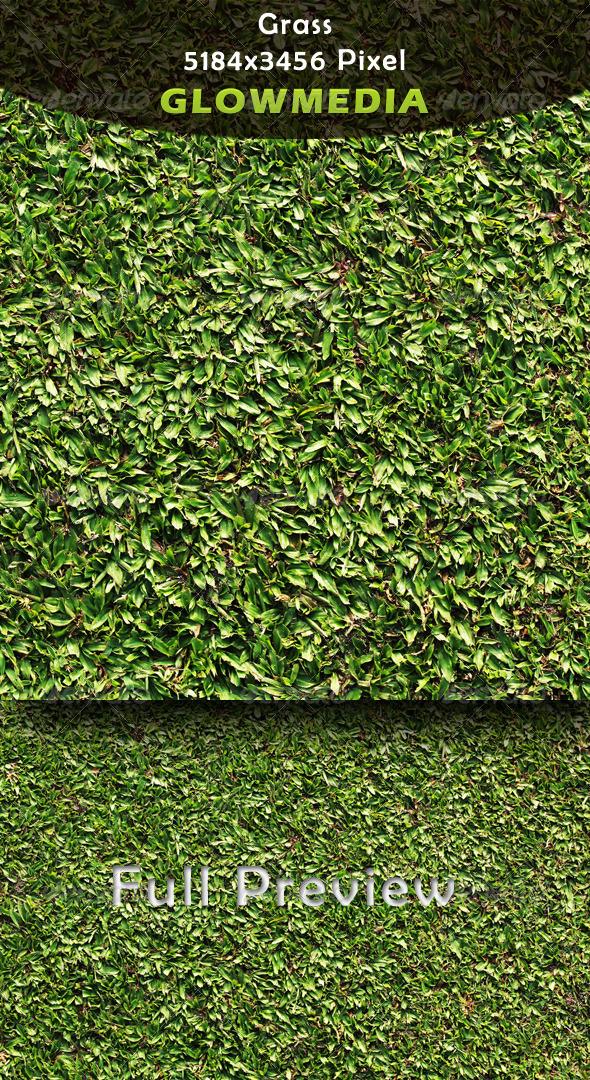 GraphicRiver Grass 4130367