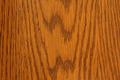 Red Oak - PhotoDune Item for Sale