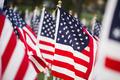 American flags - PhotoDune Item for Sale