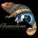 webchameleon