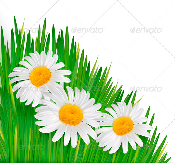 GraphicRiver Nature Background with Flowers 4142879