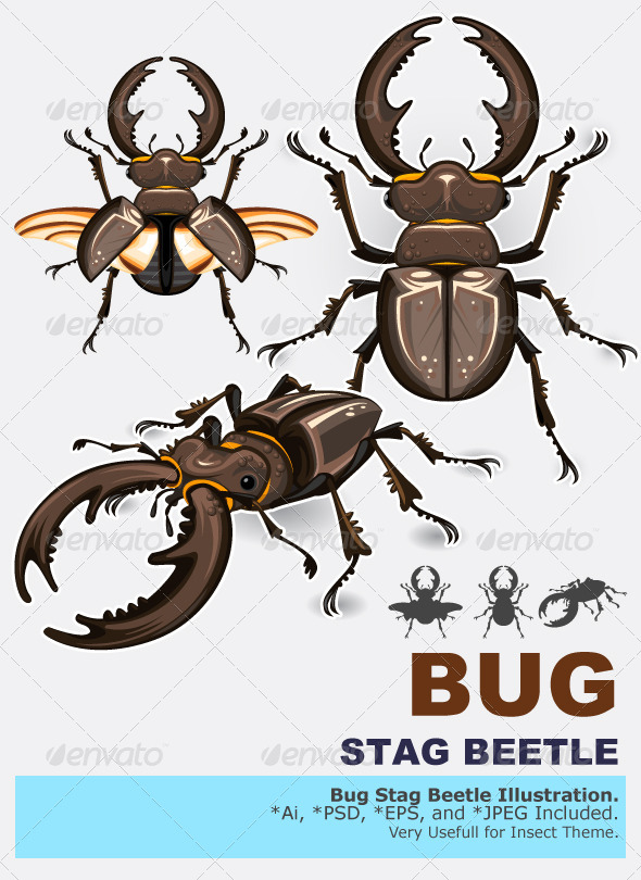 GraphicRiver Stag Beetle Insect 4144143