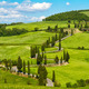 Tuscany road with cypress trees, Val d'Orcia, Italy - PhotoDune Item for Sale