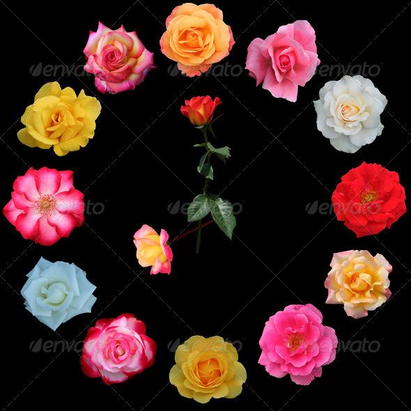 PhotoDune Clock face made of roses 4151236