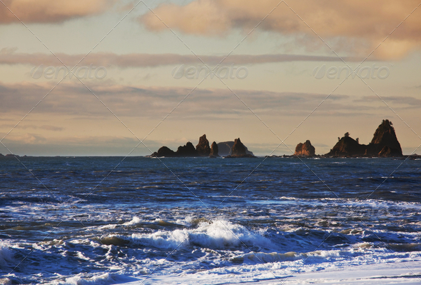 Olympic coast - Stock Photo - Images