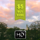 Time Lapse Clouds Over Treetops - VideoHive Item for Sale