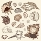 Sea Collection. Hand Drawn Vector Illustration - GraphicRiver Item for Sale