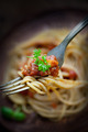 Pasta with tomato sauce - PhotoDune Item for Sale