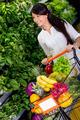 Woman shopping organic
