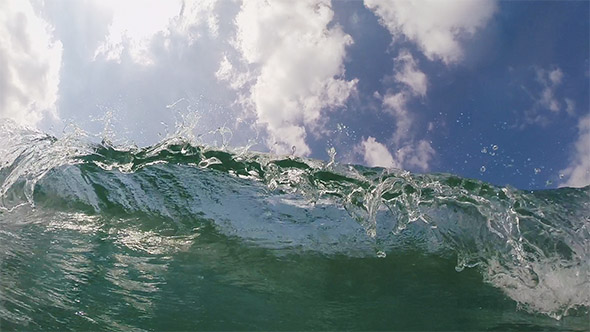 Summer Surf and Wave