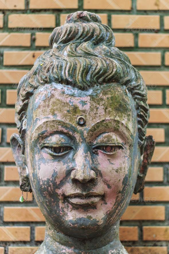 PhotoDune Head Buddha head In Wat Umong Chiangmai 4175612
