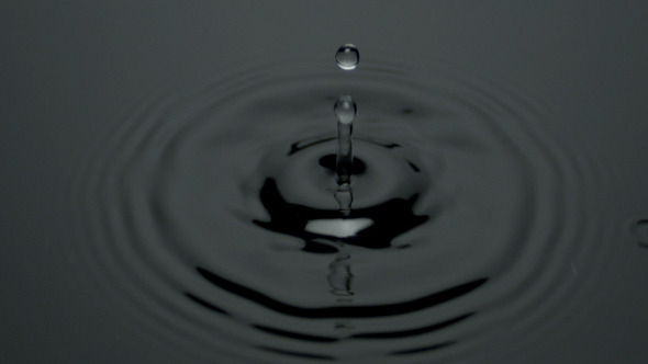 Water Drop Black