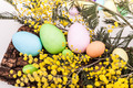 Easter Eggs And Mimosas - PhotoDune Item for Sale