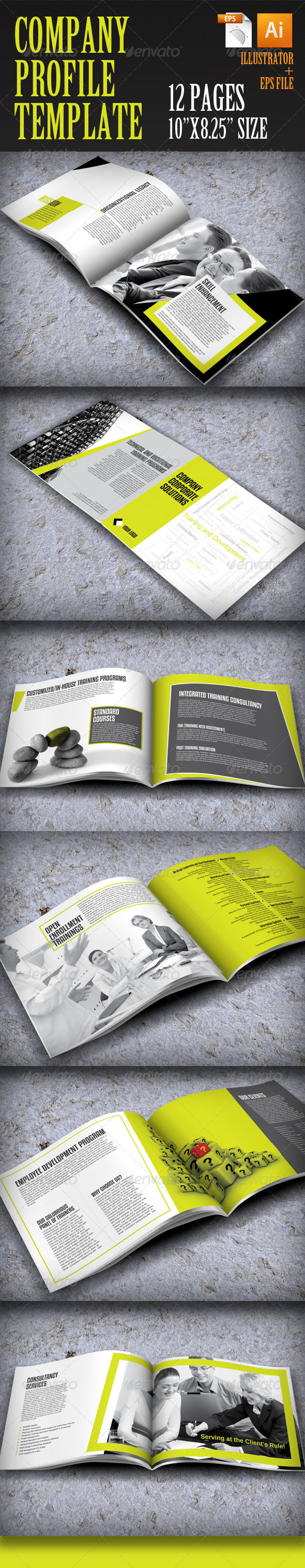 GraphicRiver Company Profile Template 4034201