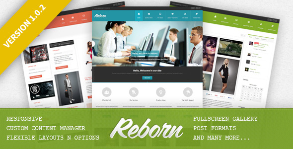 Reborn - Premium Multipurpose WP Theme - Theme Preview