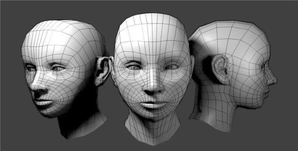 3DOcean Generic Female Low Poly Head 4203439