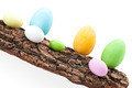 Raw Of Easter Eggs On Bark - PhotoDune Item for Sale