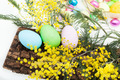 Arrangement With Easter Eggs And Mimosa - PhotoDune Item for Sale