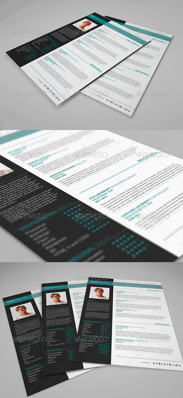 GraphicRiver Simple and Professional Resume 4214411