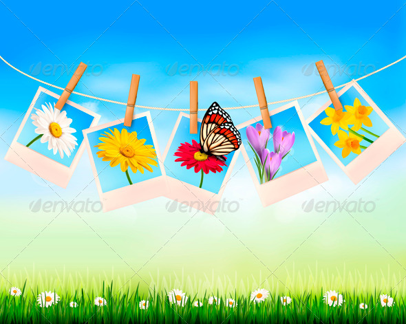 GraphicRiver Nature Background with Photo with Flowers 4216236
