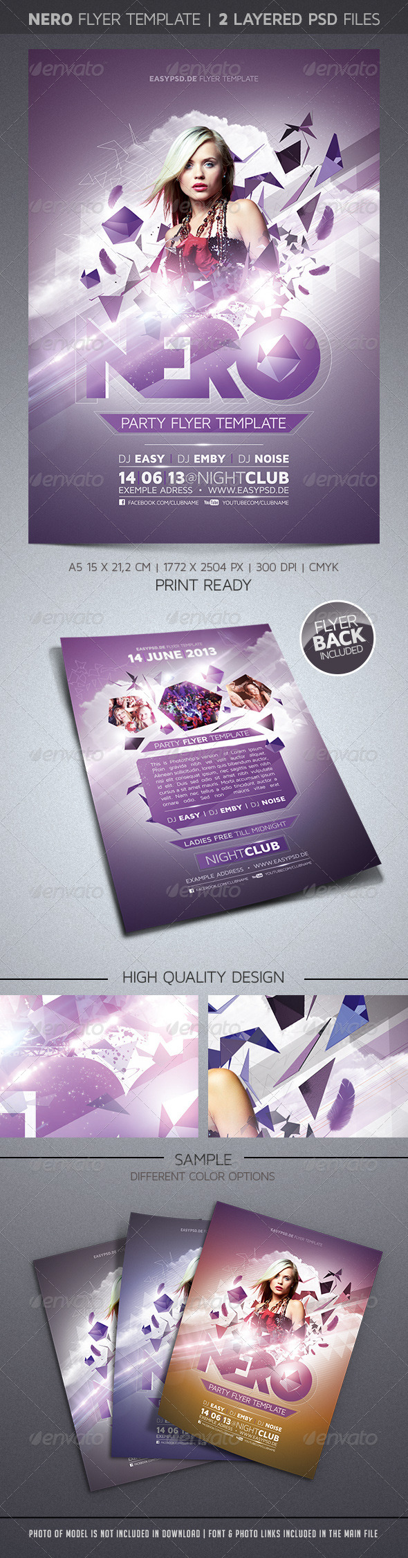 GraphicRiver Nero Flyer Template 4216586