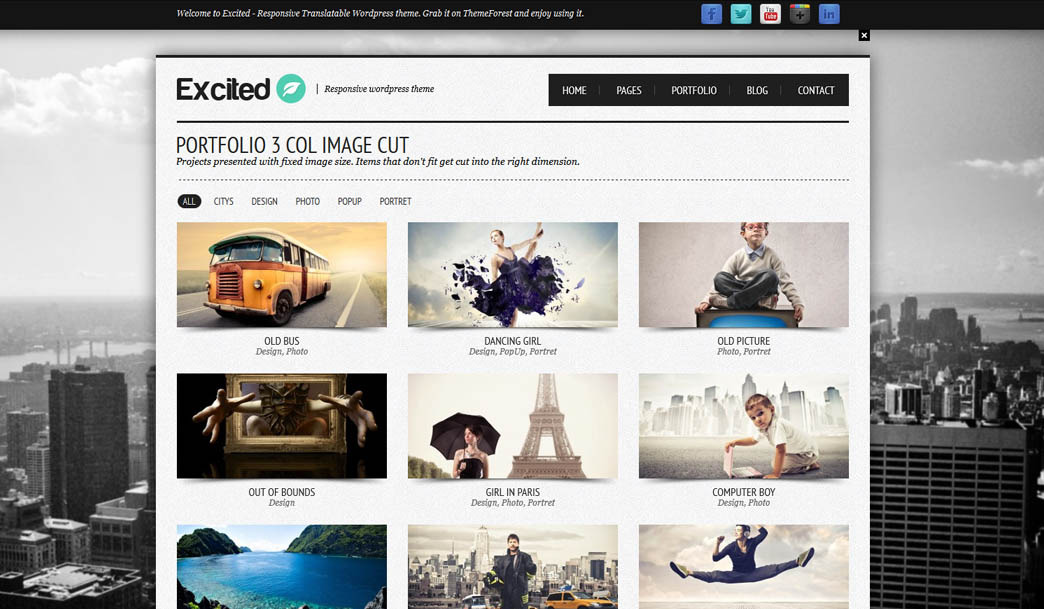 Excited - Responsive Wordpress theme