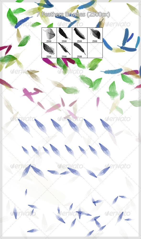 7 Feathers  Brushes (2500px)  - Brushes Photoshop