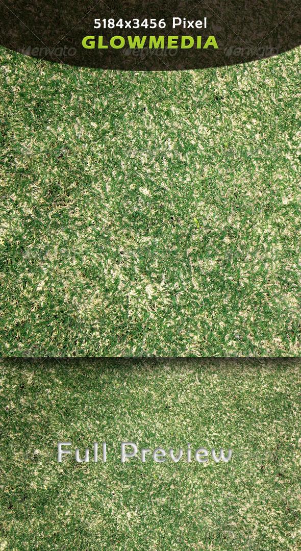 GraphicRiver Grass 4224035