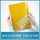 US Letter Brochure / Folder Mock-up - GraphicRiver Item for Sale