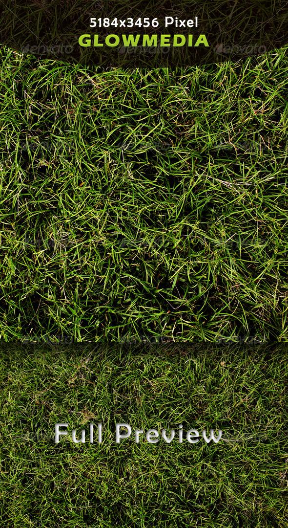 GraphicRiver Grass 4233339