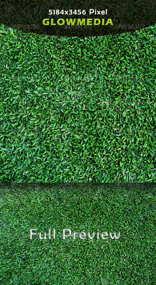 GraphicRiver Grass 4233343
