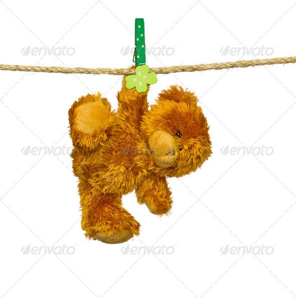 PhotoDune teddy bear 4236495